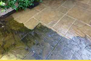 Pressure Wash Slippery Algae from your Steps and Patio