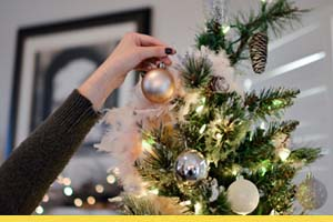 Help to set up your Christmas tree and decorations at home or in the office