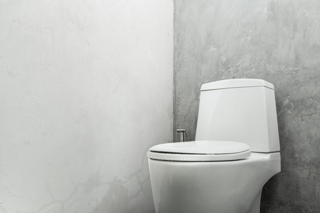 Picture of: Toilet Seat Install In London By Handyman Handy Squad